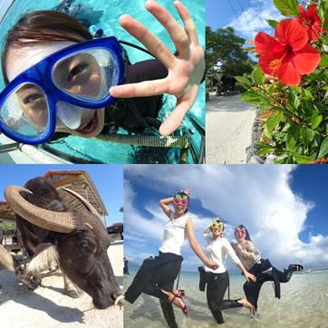 シュノーケルor体験ダイビング+竹富島観光+幻の島上陸「一日ツアー」