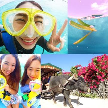 シュノーケルor体験ダイビング+竹富島観光「一日ツアー」